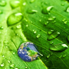 earth on rain drop