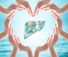 hands forming heart around liver-shaped earth to signify World Hepatitis Day
